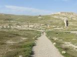 Tel Arad - Juny caminando al pasado