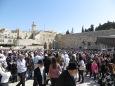 Cohen - hoy se esperan varios miles de visitantes