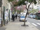 Barrio ultraortodoxo judío. A la izquierda los paneles que utilizan como noticiario.