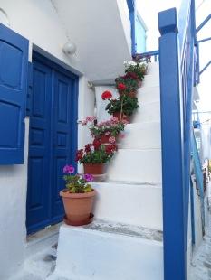Flores y mucho blanco y azul