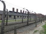"""A los pocos metros, ya se van viendo las primeras verjas electrificadas. Un doble perímetro que serviría de pasillo por donde se hacía llegar a los nuevos """"prisioneros""""."""