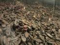 ... muchos zapatos,...