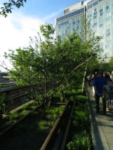 La antigua linea de tranvía se ha convertido en un lugar donde poder pasear tranquilamente