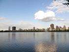 Así de precioso se veía el lago de Central Park, en puro centro de Nueva York.