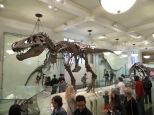 Un T-Rex?