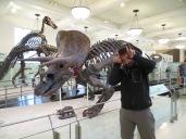 Triceratoooops!