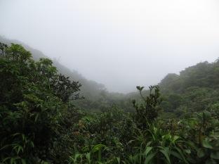 Llegamos a la cima del Bosque Nuboso, impresionante la rapidez con la que las nubes se movían en esta zona del parque.