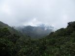 En un momento dado conseguimos ver más y más bosques en el horizonte