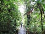 Bienvenidos a Monteverde!