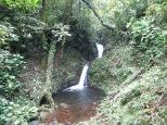 Cascada en el corazón de Monteverde