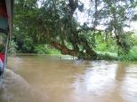 En época de lluvias los canales se desbordan!