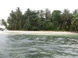 Zapatilla 2, una isla virgen repleta de palmeras, una laguna en su interior donde habita un pequeño caimán