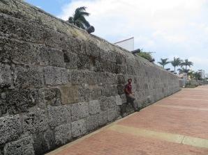 Las murallas y sus cañones