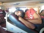 El oso... a dormir!