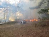 No os asustéis, no se estaba quemando el bosque. Recogen todas las malas hierbas, y las hojas, las amontonan y luego queman de manera controlada para evitar incendios