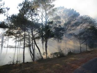 Y entre humo se vieron los rayos de sol que nos regalaron esta preciosa imagen