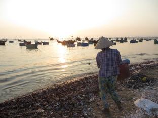 Los cascos de las vieiras se van a la orilla...