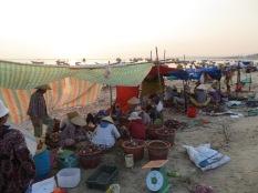 En la orilla, las mujeres siguen abriendo y vaciando vieiras.