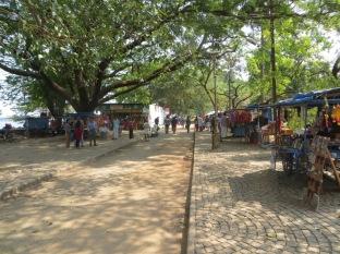Visita fugaz a Kochi