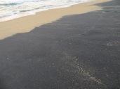 Por algo se llama así la playa...