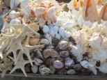 Cuanto más te acercas a la costa más souvenirs marinos personalizados te encuentras...