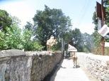 Encontrarse vacas era casi más fácil que cruzarse con personas, pero esta era escaladora...